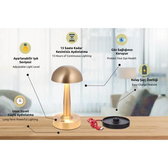 Avonni ML-64004-E Eskitme Kaplama Masa Lambası LED Metal Pleksi 12cm